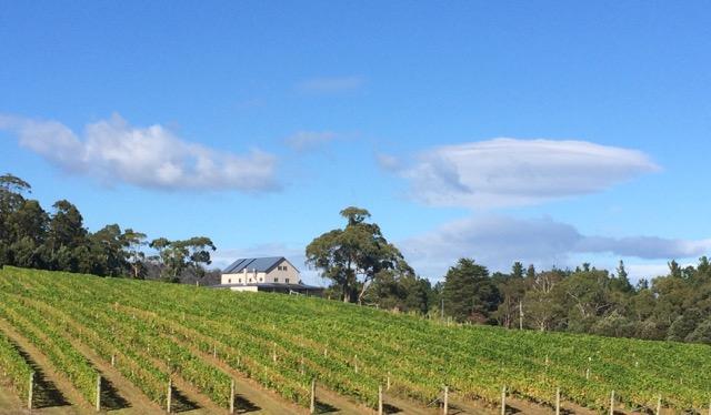 Premium Wines Australia
