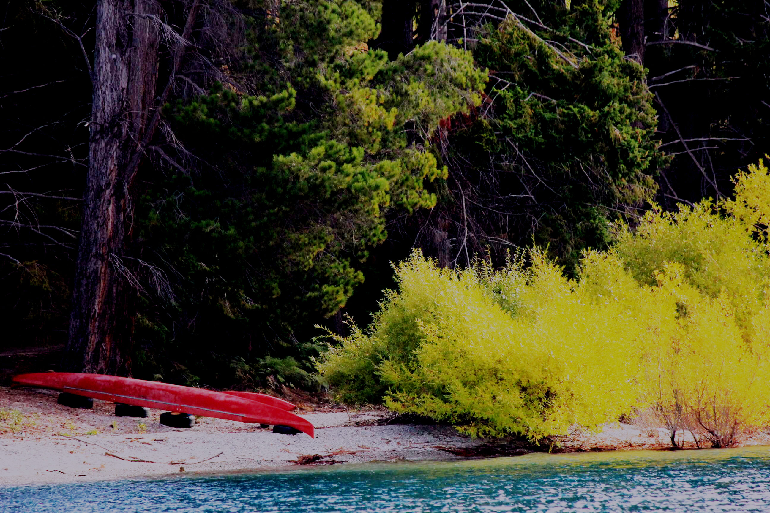 On the shores of Lake Wakatipu Queenstown New Zealand